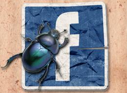 Facebook User Data Leak
