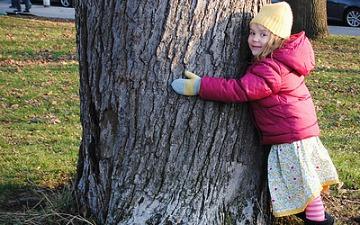 tree hug image