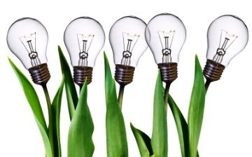 eco light bulbs
