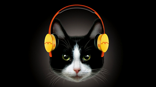 Meowingtons Headphones for Cats from Sol Republic