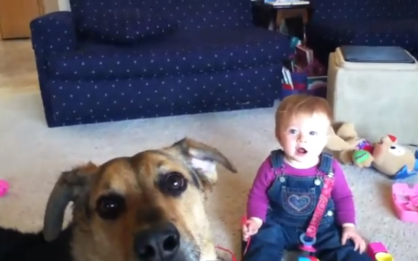 10 Infectious YouTube Clips of Babies Laughing at Dogs