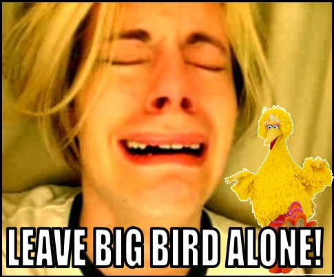 Big Bird Mashable meme