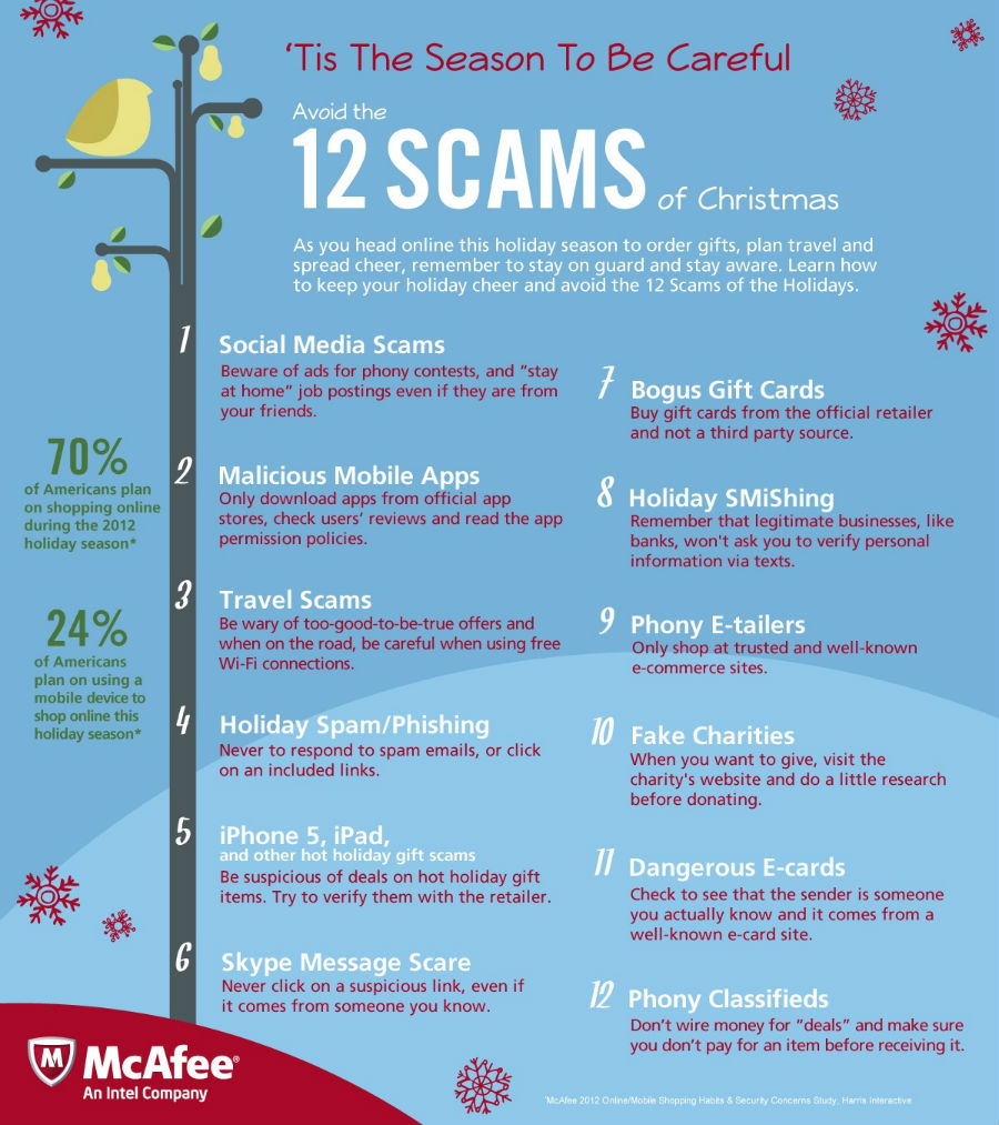 Online Scams Infographic
