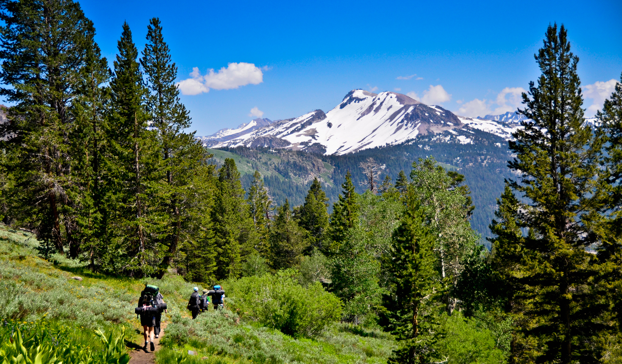 The 'Wild' effect: Hikers are flooding the Pacific Crest Trail