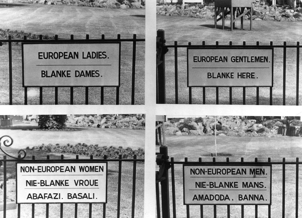 african apartheid essay south african apartheid essay